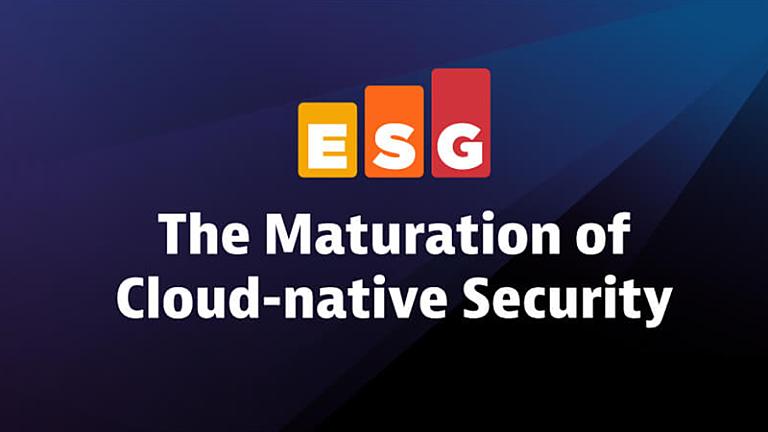Esg ebook application security